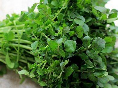 Lợi ích của rau cải xoong